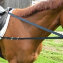 Lauffer Or Sliding Side Reins
