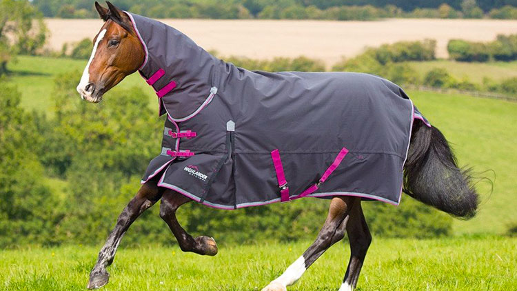 best heavyweight turnout rugs