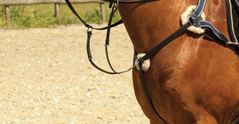 different martingales