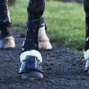 protective horse boots and bandages